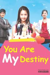 You Are My Destiny - Em Là Định Mệnh Đời Anh